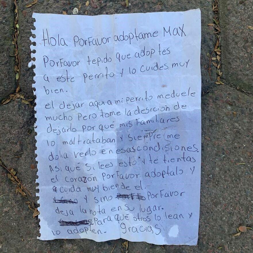 Criança abandona cão junto com bilhete ... porque este era maltratado pelos pais